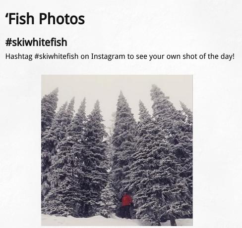 SkiWhitefish
