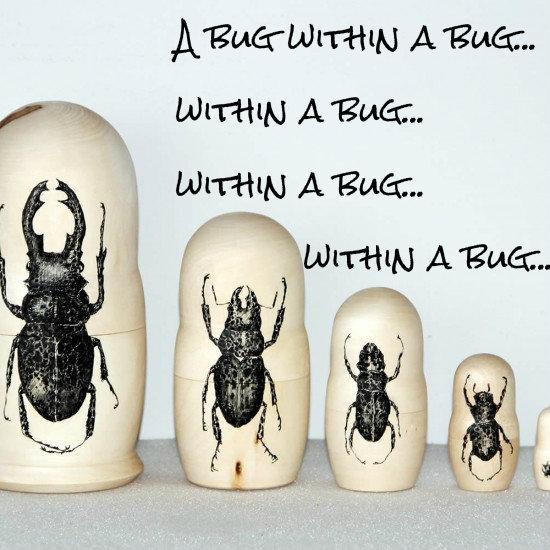 bugsbugsbugsbugs